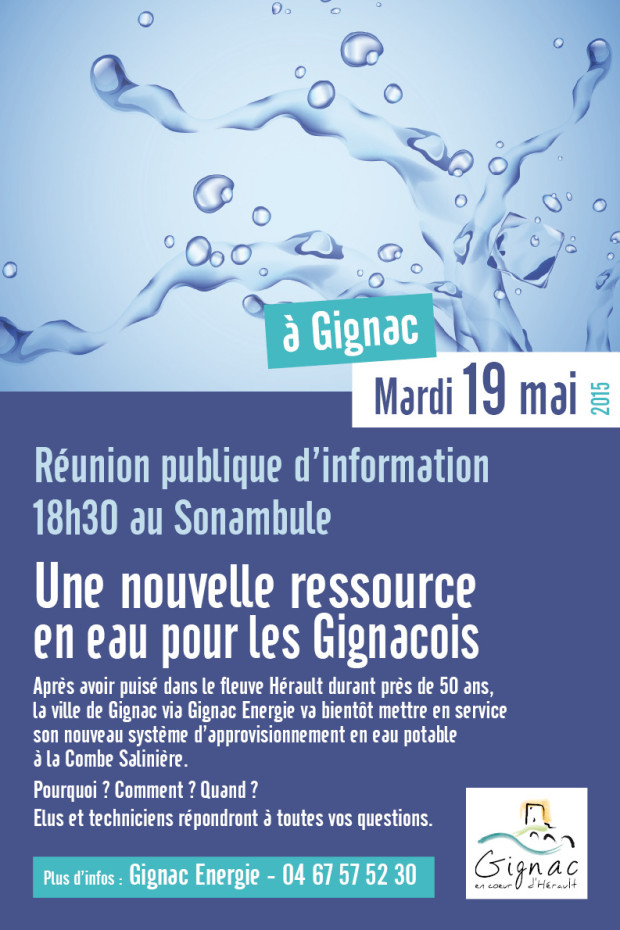 Affiche Réunion publique Combe Salinière 2015_actu1
